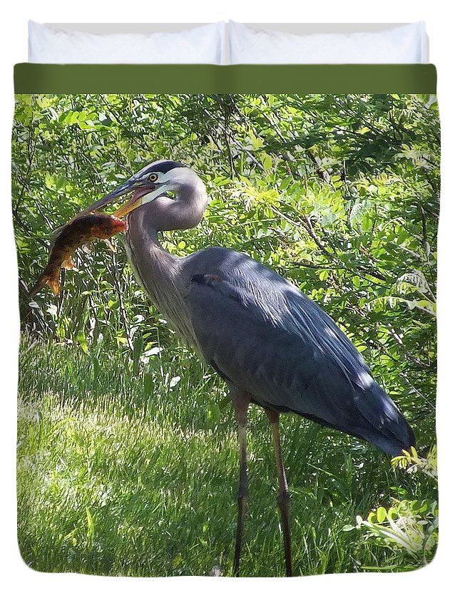 Great Blue Heron Duvet Cover featuring the photograph Great Blue Heron Grabs A Meal by Christina Shaskus