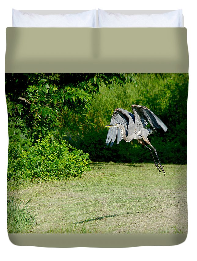Roy Williams Duvet Cover featuring the photograph Great Blue Heron In Flight 6 by Roy Williams
