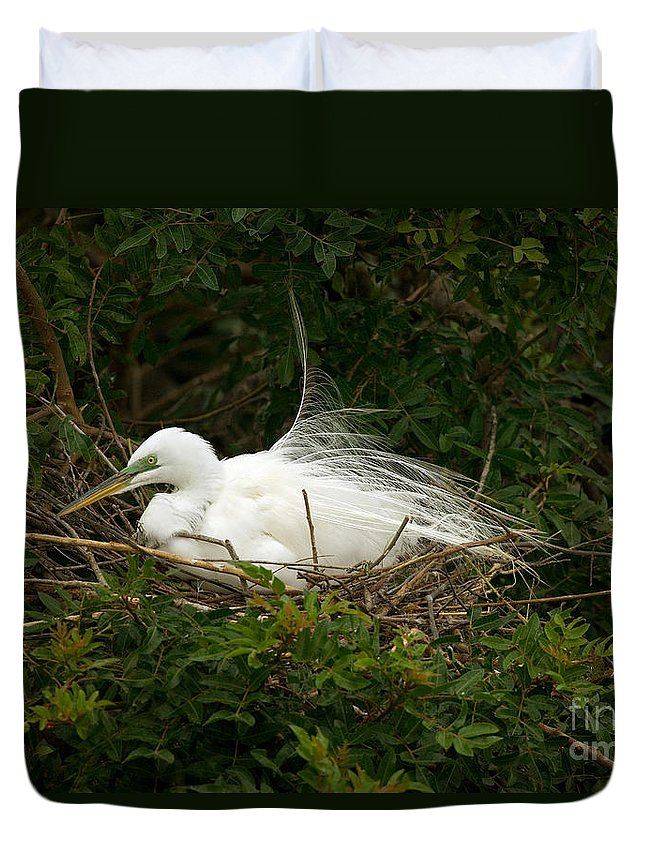 Egret Duvet Cover featuring the photograph Great Egret by Anthony Mercieca