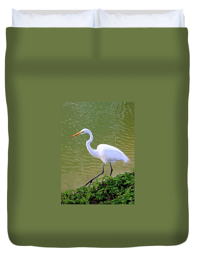 Great Duvet Cover featuring the photograph Great Egret by Laurel Talabere