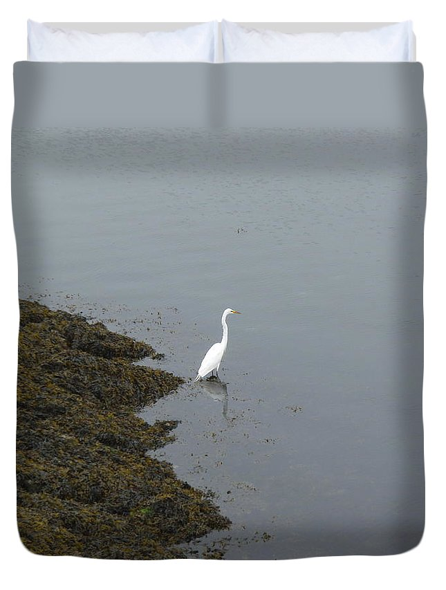 Great Egret.bird Duvet Cover featuring the photograph Great Egret by Robert Nickologianis