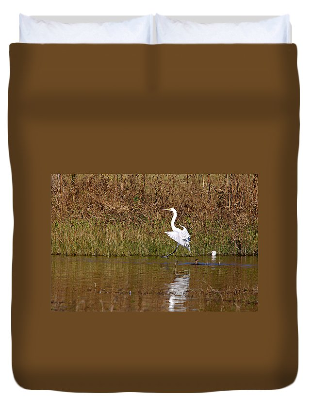 Roy Williams Duvet Cover featuring the photograph Great Egret Wing Water Reflections 3 by Roy Williams