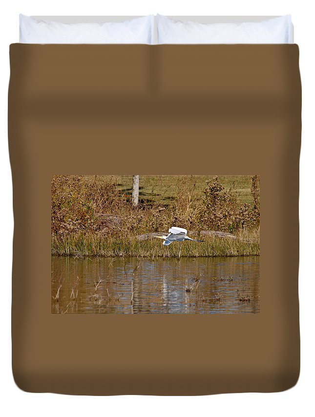 Roy Williams Duvet Cover featuring the photograph Great Egret Wing Water Reflections by Roy Williams