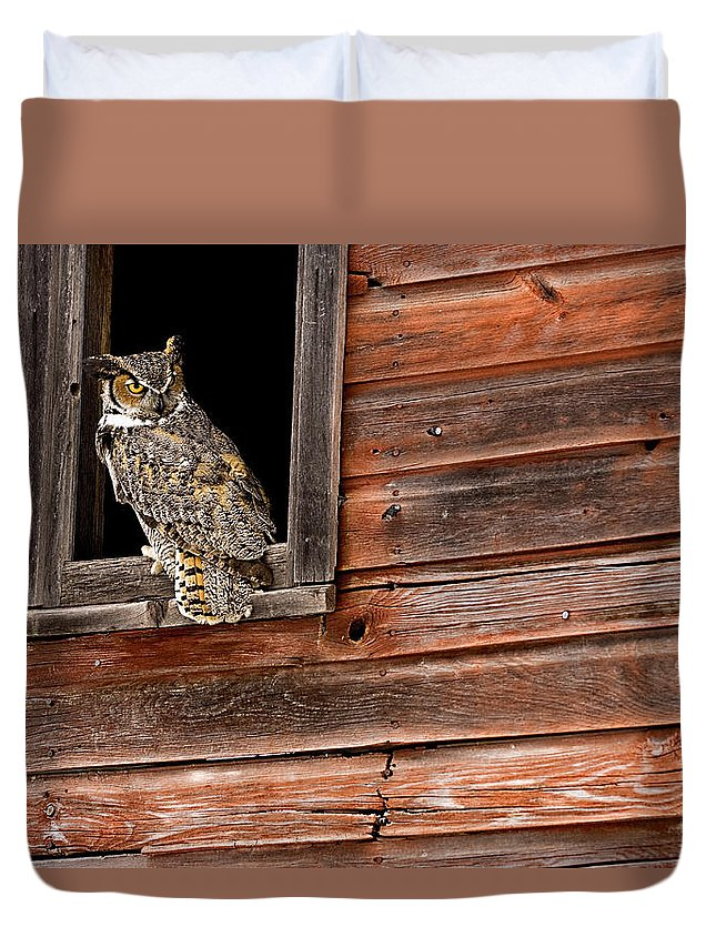 Great Horned Owl Duvet Cover featuring the photograph Great Horned by Jack Milchanowski