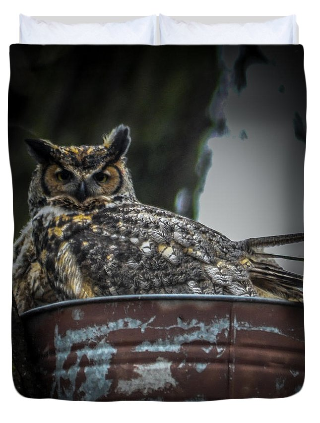 Owl Duvet Cover featuring the photograph Great Horned Owl On Nest by Ronald Grogan