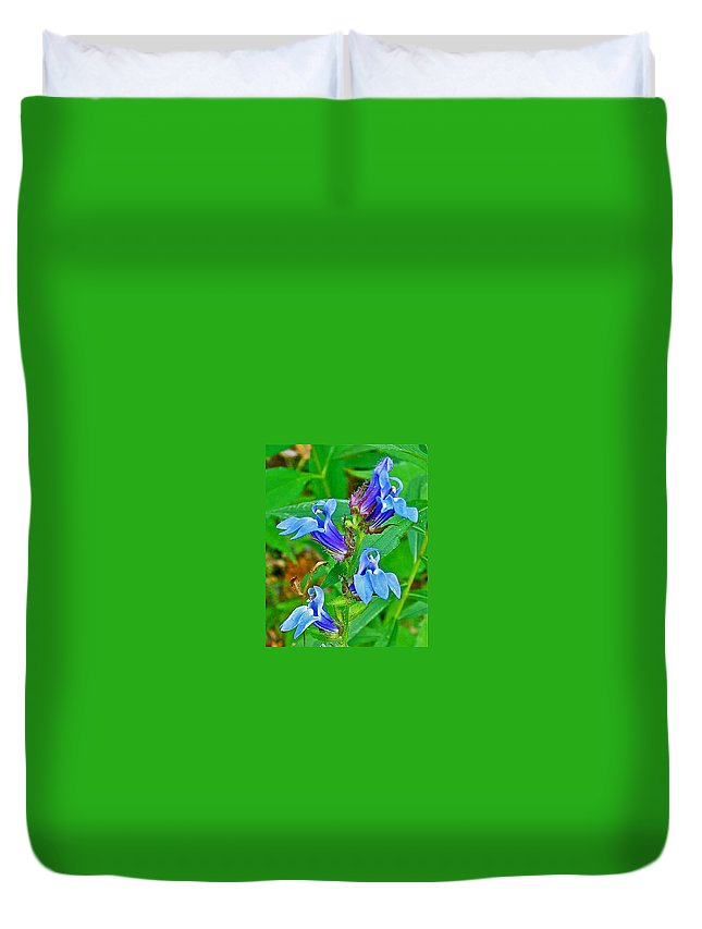 Great Lobelia Near Alamo Duvet Cover featuring the photograph Great Lobelia Near Alamo-michigan  by Ruth Hager