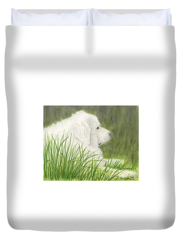Great Duvet Cover featuring the painting Great Pyrenees Dog In Grass Animal Pets Canine Art by Cathy Peek