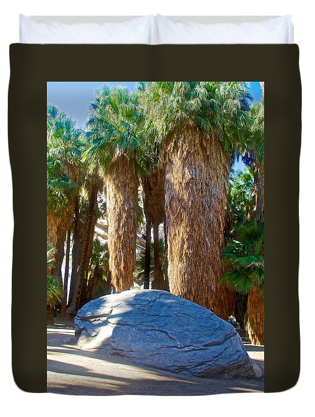 Great Sliding Rock In Lower Palm Canyon In Indian Canyons Near Palm Springs Duvet Cover featuring the photograph Great Sliding Rock In Lower Palm Canyon In Indian Canyons Near Palm Springs-california by Ruth Hager