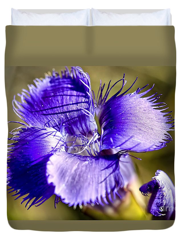 Greater Fringed Gentian Duvet Cover featuring the photograph Greater Fringed Gentian by Teresa Zieba