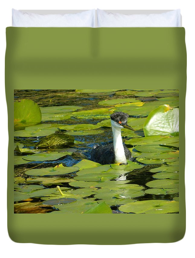 Grebe Duvet Cover featuring the photograph Grebe by Nicki Bennett