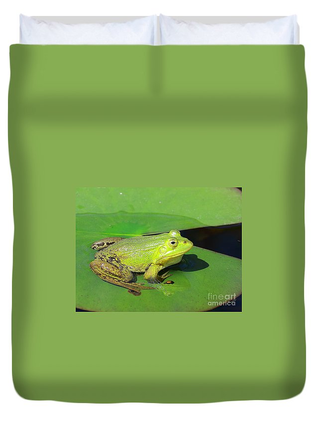Frogs Duvet Cover featuring the photograph Green Frog by Amanda Mohler