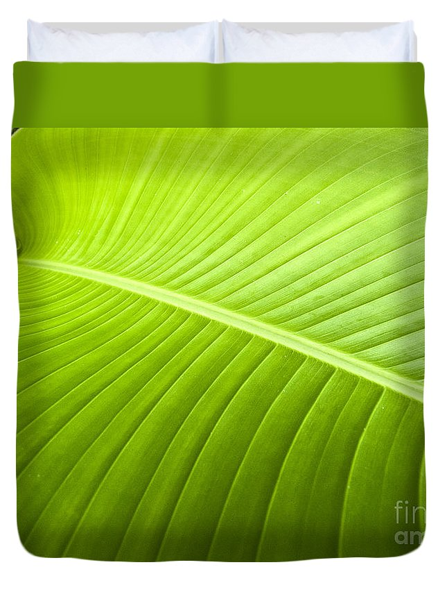 Heiko Duvet Cover featuring the photograph Green Leaf by Heiko Koehrer-Wagner