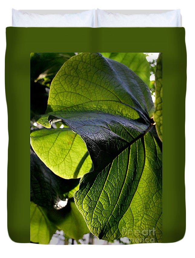 Leaf Duvet Cover featuring the photograph Green Leaf I by Nancy Mueller
