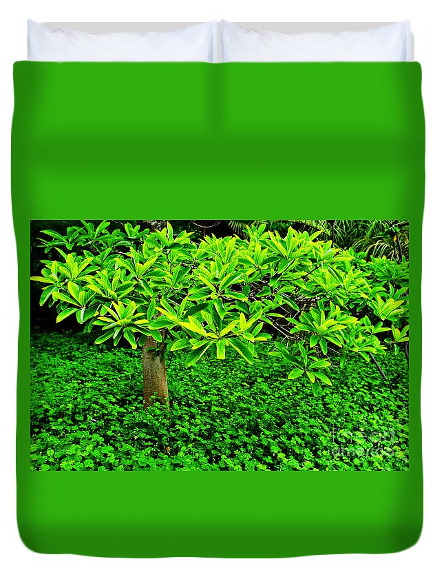 Green Duvet Cover featuring the photograph Green On Green by Gary Richards