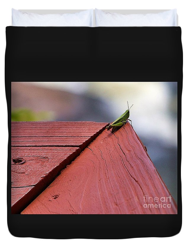 Grasshopper Duvet Cover featuring the photograph Green On Red by Chuck Hicks