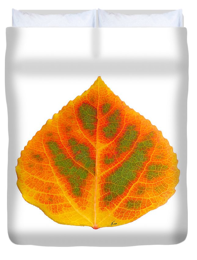 Aspen Leaf Duvet Cover featuring the digital art Green Orange Red And Yellow Aspen Leaf 5 by Agustin Goba