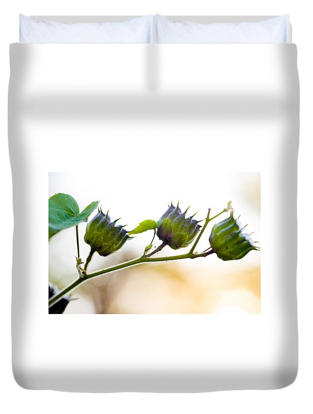 Green Flowers Duvet Cover featuring the photograph Green Spiky Wild Flowers by Optical Playground By MP Ray