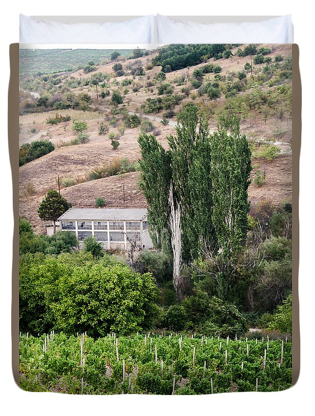 Blue Duvet Cover featuring the photograph Green Wine Yard by Sotiris Filippou