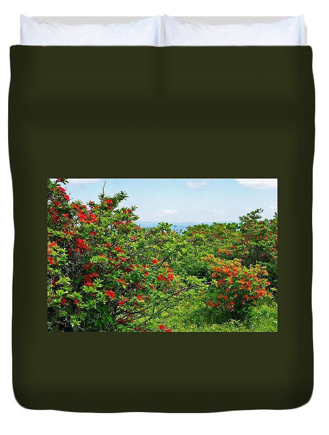 Wild Azaleas Duvet Cover featuring the photograph Gregory Bald by Melinda Fawver