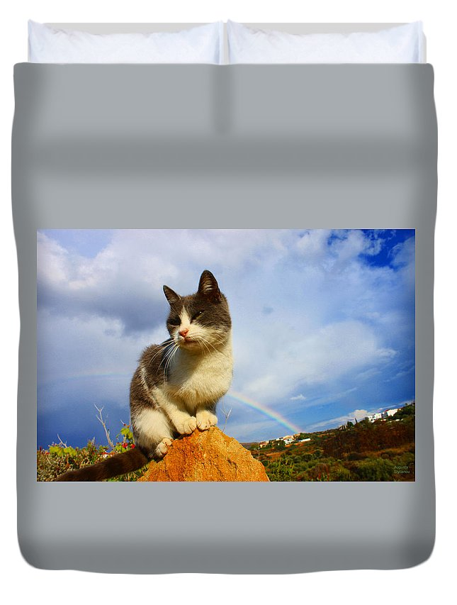 Rainbow Duvet Cover featuring the photograph Grey Cat And Rainbow by Augusta Stylianou