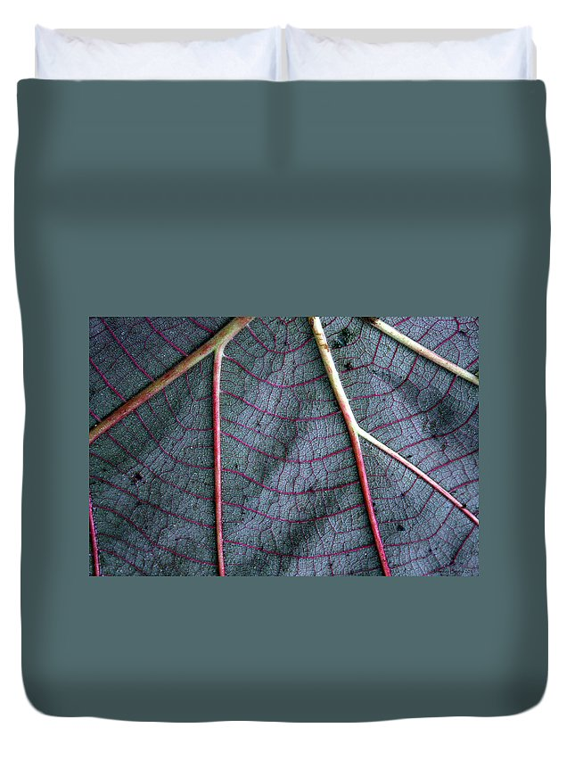 Leaf Duvet Cover featuring the photograph Grey Leaf With Purple Veins by Jennifer Bright