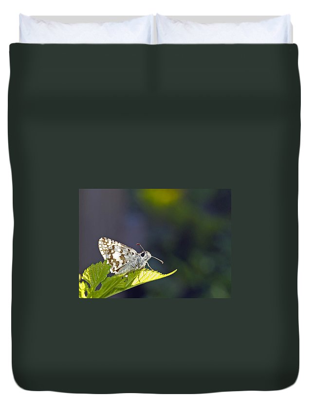 Grizzled Skipper Duvet Cover featuring the photograph Grizzled Skipper Two by Michael Peychich