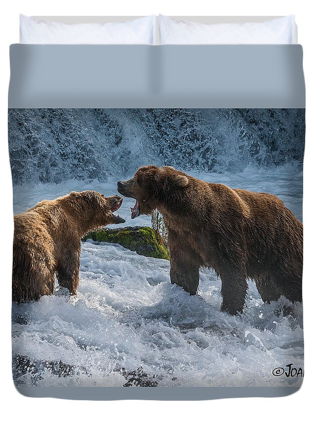 Alaska Duvet Cover featuring the photograph Grizzlies Fighting by Joan Wallner
