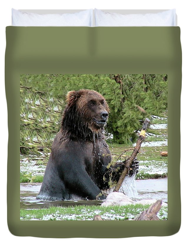 Grizzly Duvet Cover featuring the photograph Grizzly Bear 6 by Thomas Woolworth