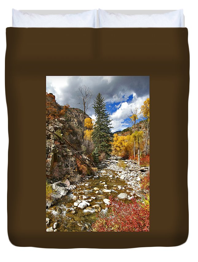 Grizzly Creek Duvet Cover featuring the photograph Grizzly Creek Cottonwoods Vertical by Jeremy Rhoades