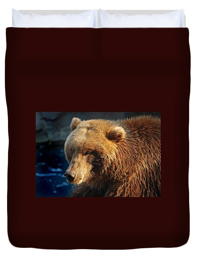 Grizzly Bear Duvet Cover featuring the photograph Grizzly by Skip Willits