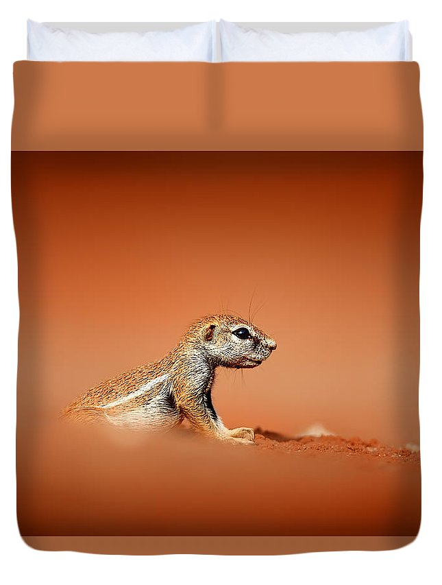 Low Angle Duvet Covers