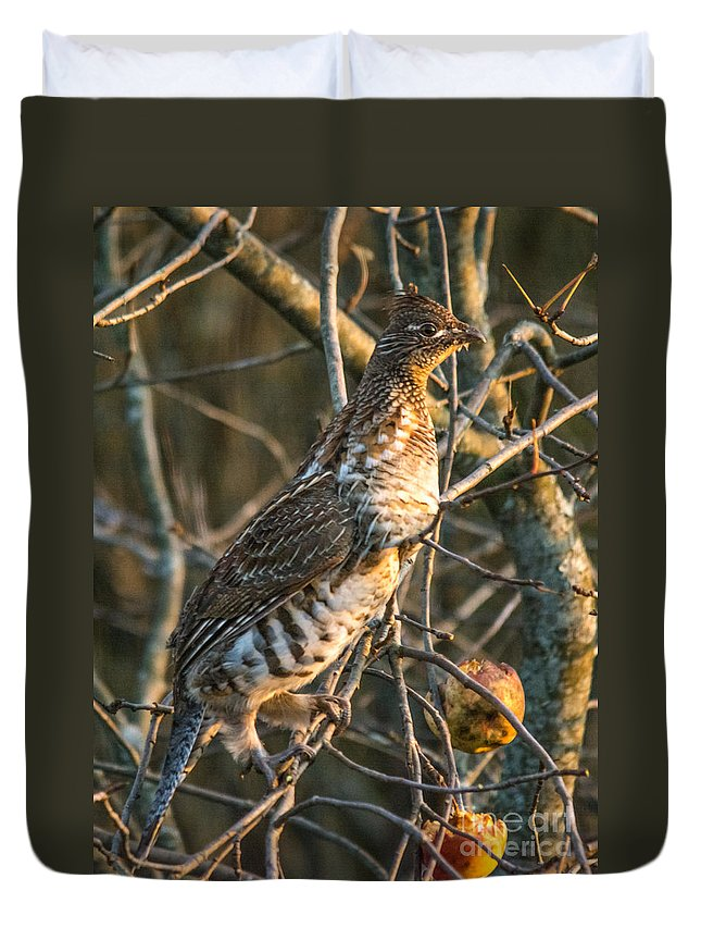 Duvet Cover featuring the photograph Grouse In An Apple Tree by Cheryl Baxter