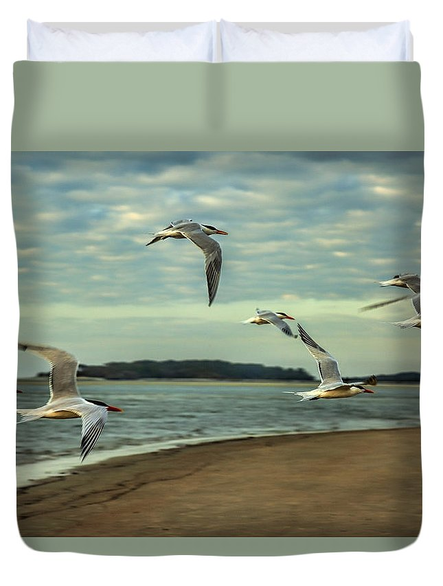 Tybee Island Duvet Cover featuring the photograph Gulls In Flight by Diana Powell