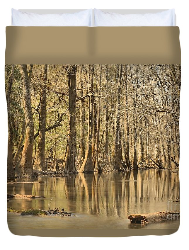 Congaree National Park Duvet Cover featuring the photograph Hall Of Cypress by Adam Jewell