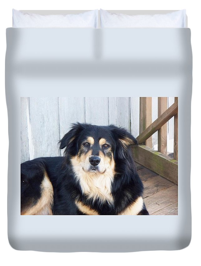 Dog Duvet Cover featuring the photograph Handsome Boy by Lisa Wormell