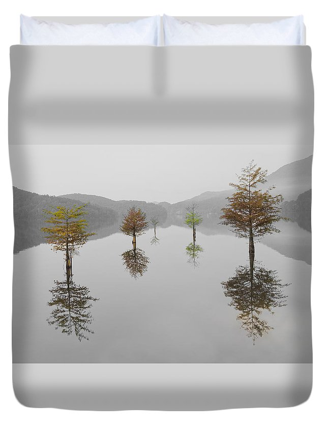 Appalachia Duvet Cover featuring the photograph Hanging Garden by Debra and Dave Vanderlaan