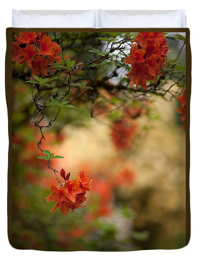 Rhodies Duvet Cover featuring the photograph Hanging by Mike Reid