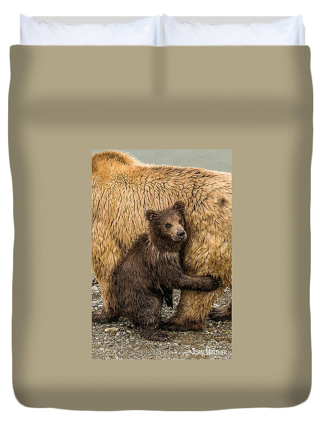 Alaska Duvet Cover featuring the photograph Hanging Onto Mom by Joan Wallner