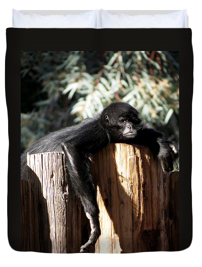 Monkey Duvet Cover featuring the photograph Hanging Out by Laurel Powell