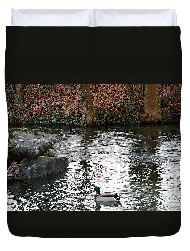 Life In The Nature Duvet Cover featuring the photograph Happy Feet by Felicia Tica
