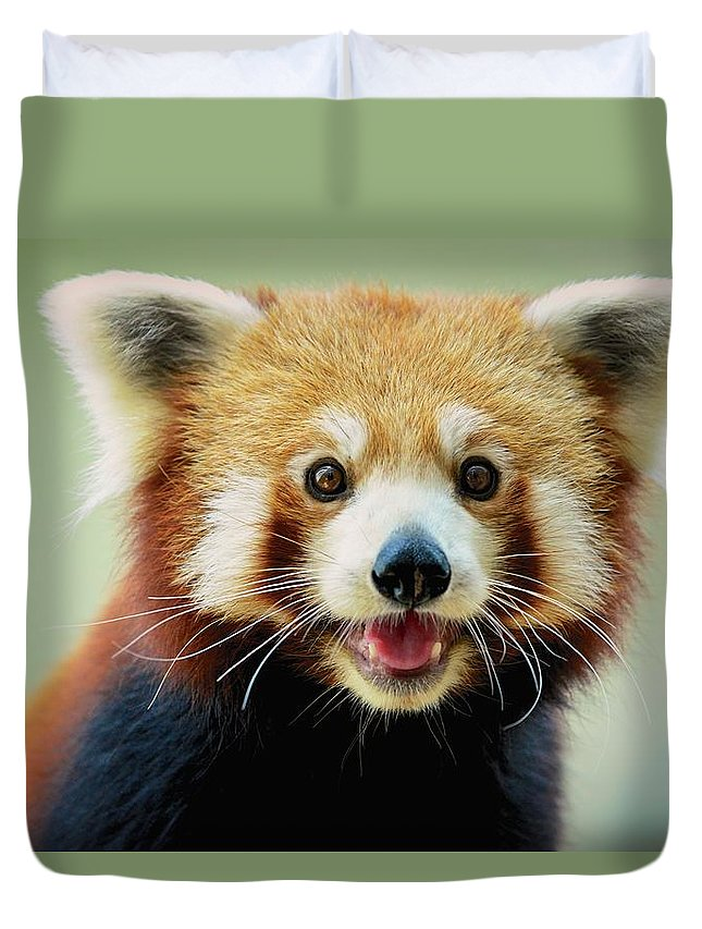 Panda Duvet Cover featuring the photograph Happy Red Panda by Aaronchengtp Photography