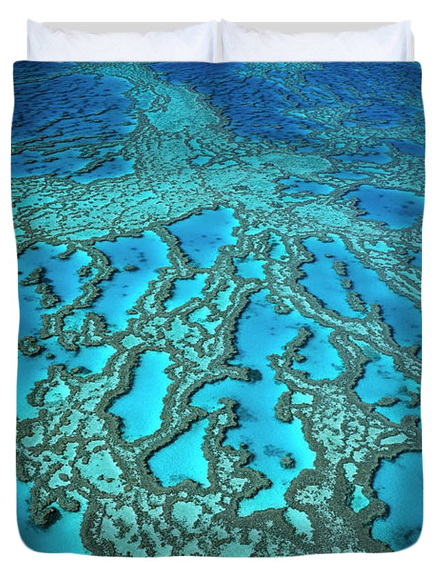 Ai Duvet Cover featuring the photograph Hardy Reef On The Great Barrier Reef Marine by Jean-Paul Ferrero