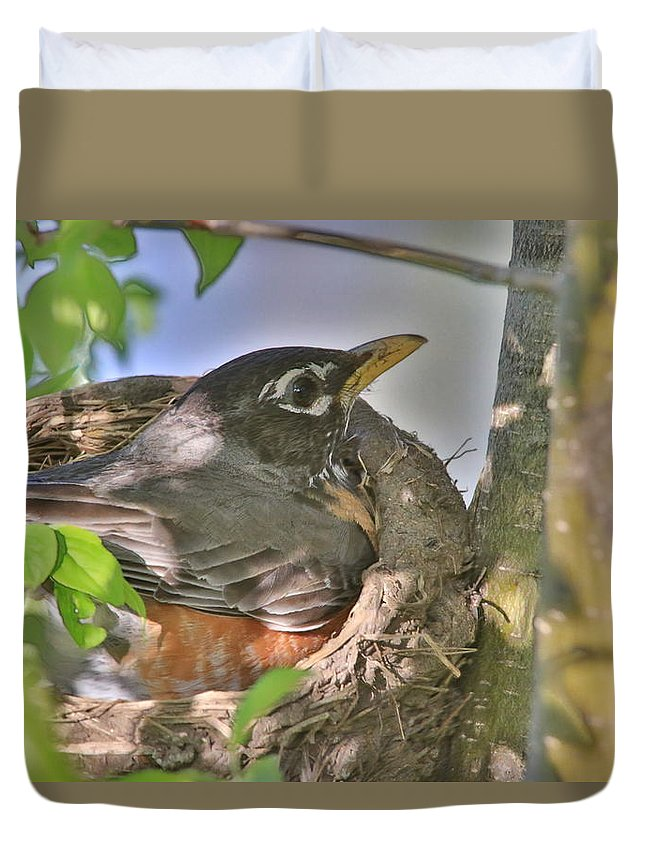 Birds Duvet Cover featuring the photograph Hatching Eggs by Melvin Busch