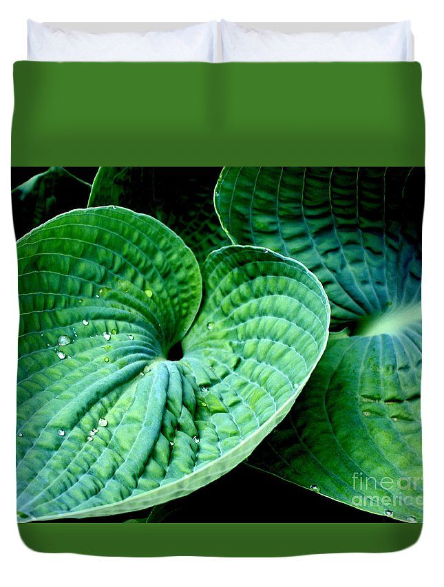 Hosta Duvet Cover featuring the photograph Have A Heart by Valerie Fuqua