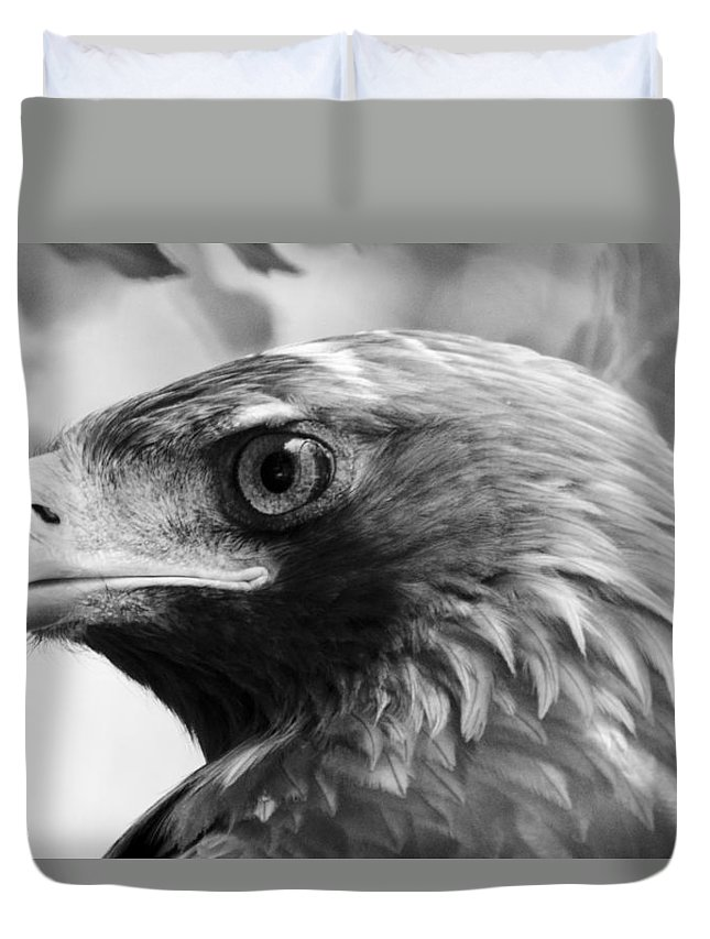Animal Photographs Duvet Cover featuring the photograph Hawkeye by Sotiris Filippou