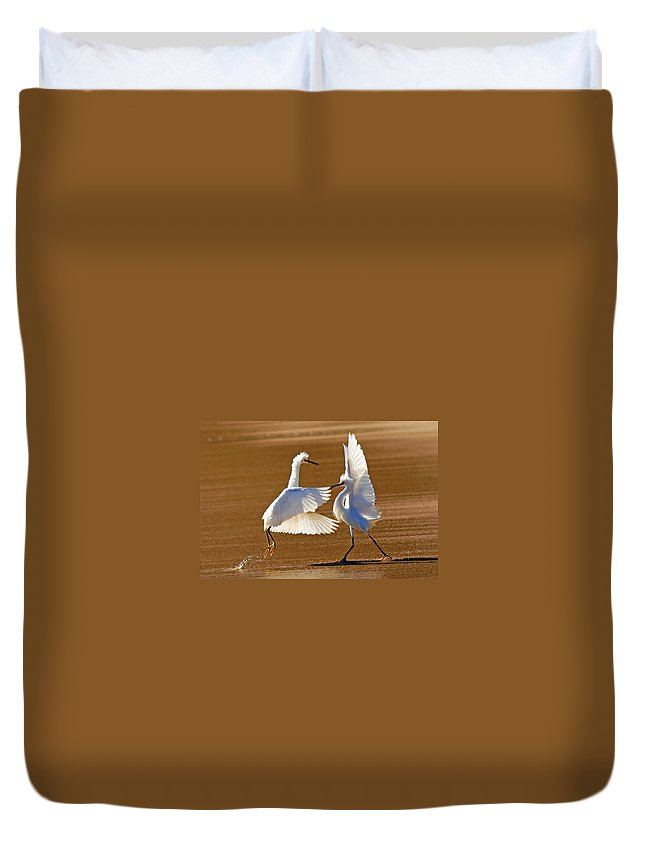 Egret Duvet Cover featuring the photograph He Swept Me Off My Feet by Davids Digits