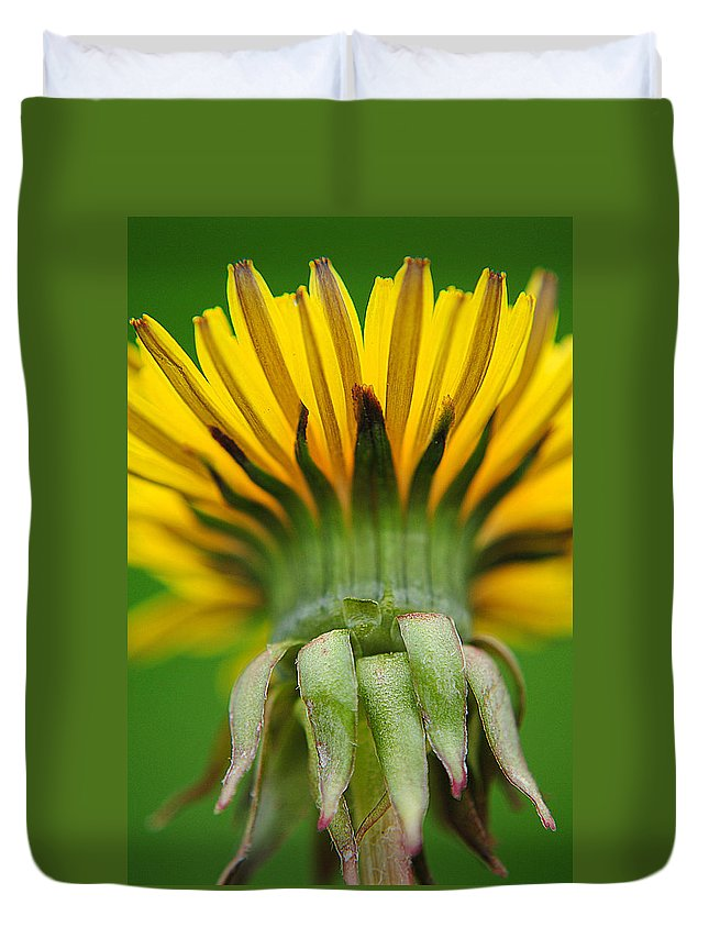Head Duvet Cover featuring the photograph Head Dress by Frozen in Time Fine Art Photography