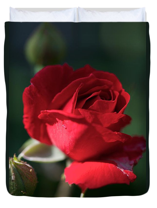 Flowers Duvet Cover featuring the photograph Heart Gently by Joseph Yarbrough