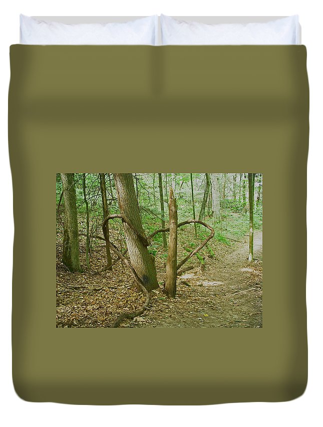 Nature Duvet Cover featuring the photograph Heart Shaped Roots by Aimee L Maher ALM GALLERY