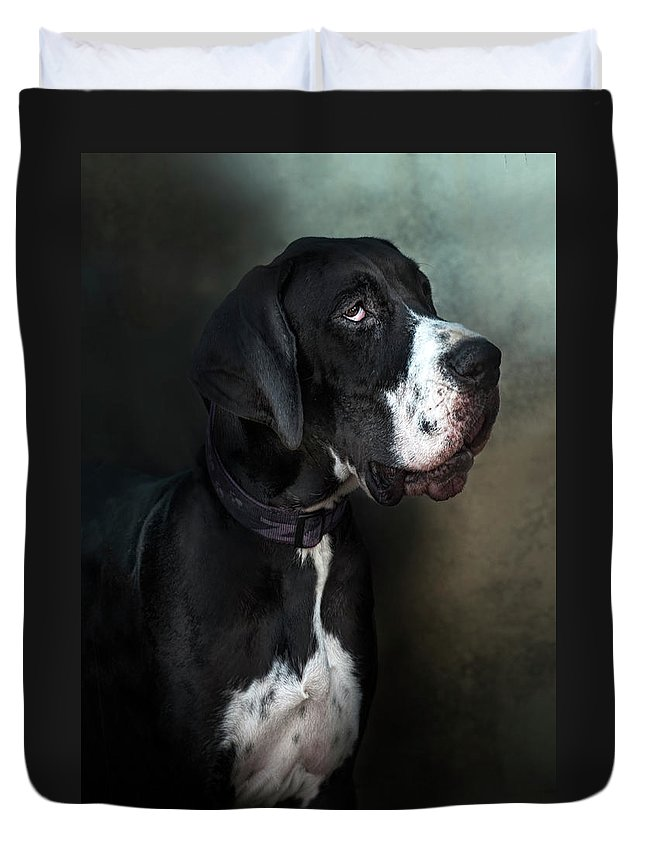 Pets Duvet Cover featuring the photograph Helga by Silversaltphoto.j.senosiain